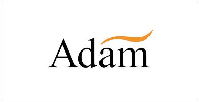 chimeneas eléctricas adam